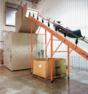 Grinder Feeding Conveyors